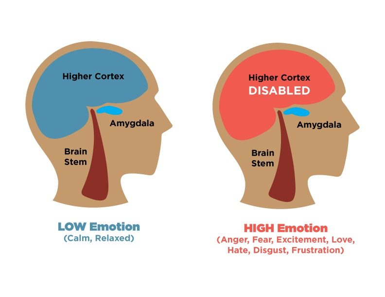 emotional hijacking the trigger to an unhealthy mind