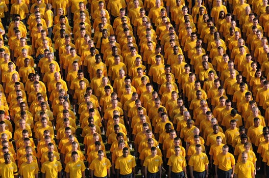 army of yellow .jpg