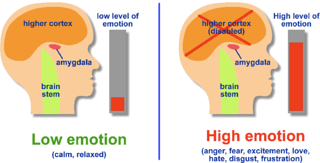 Reduce Emotional Hijacking with Emotional Intelligence
