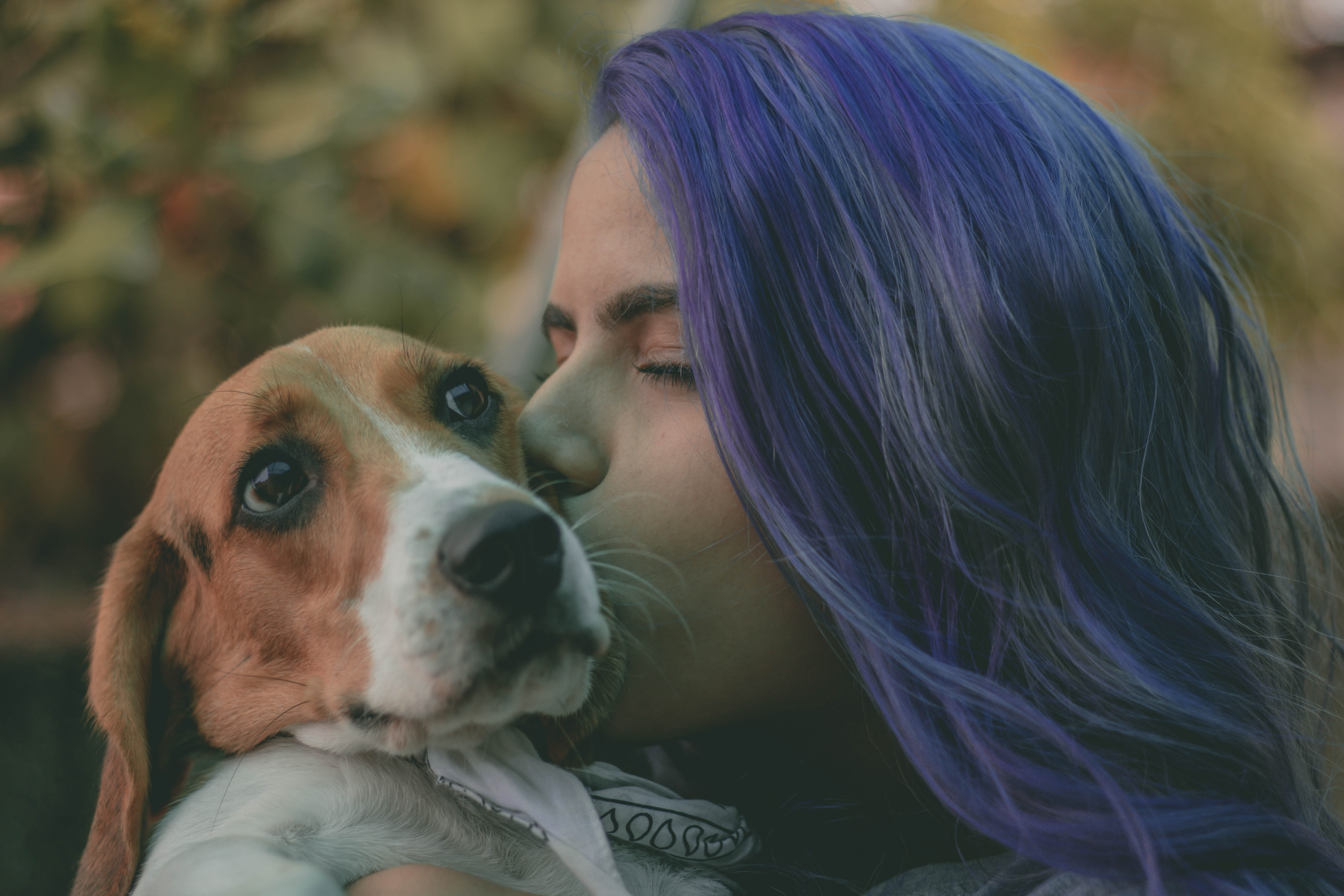 Land a new job by learning from man's best friend